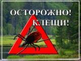 Вакцинация против клещевого вирусного энцефалита!