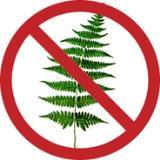 «Берегите лес!»