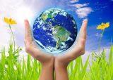 Познавательный досуг экологической направленности в группах старшего дошкольного возраста