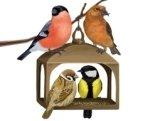 «Пчелки» заботятся о птицах